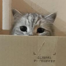 hiromuのユーザーアイコン