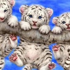 白虎 🐯( #白虎  四神四獣の一神獣)のユーザーアイコン