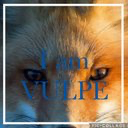 VULPE's user icon