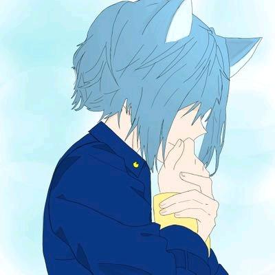 山猫くん's user icon