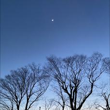 Sister Moonのユーザーアイコン
