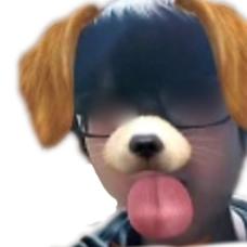 □├犬のユーザーアイコン