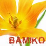 BAMIKO's user icon