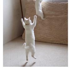 猫派です。のユーザーアイコン