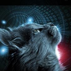 tomcatのユーザーアイコン
