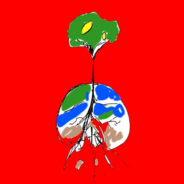 松山波理のユーザーアイコン