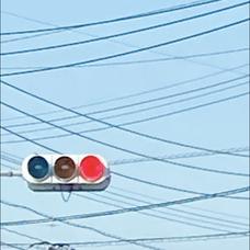 八月's user icon