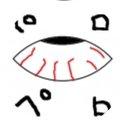 白目のユーザーアイコン