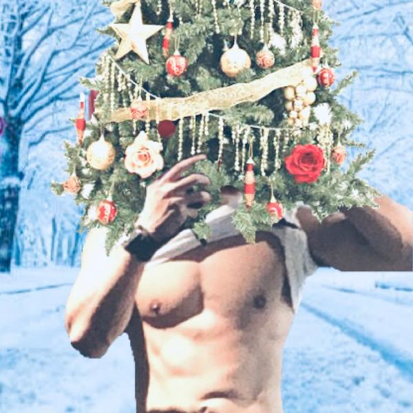 とまP(クリスマスの姿)のユーザーアイコン