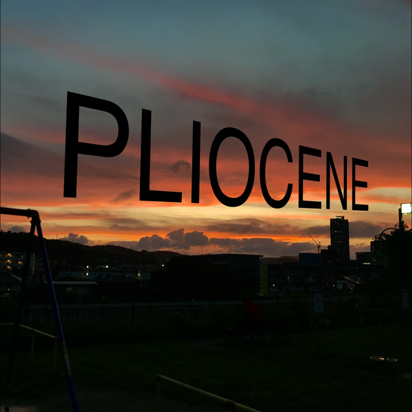 PLIOCENE のユーザーアイコン