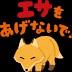 きゃんのユーザーアイコン