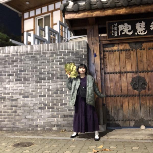 saki's user icon