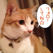 ゆき☆のりのユーザーアイコン