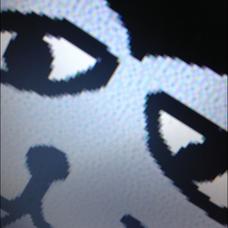 直木キャンベルのユーザーアイコン