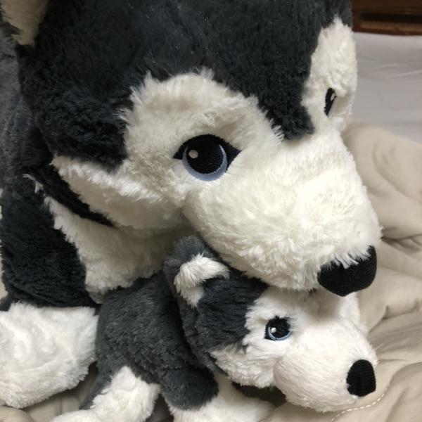 オオカミさんのユーザーアイコン