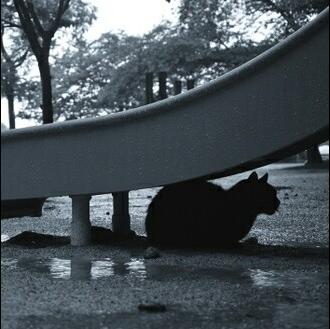 雨宿りのユーザーアイコン