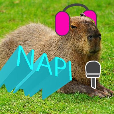 napiのユーザーアイコン