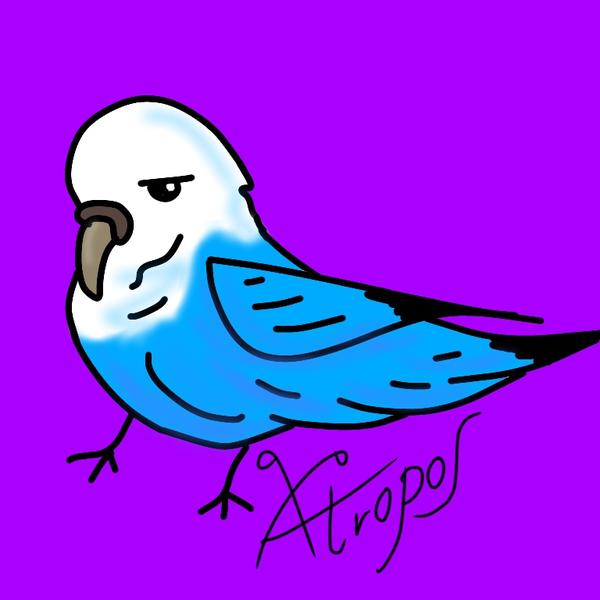Atroposのユーザーアイコン