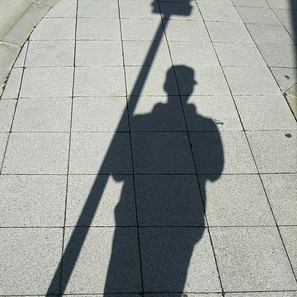 空条貞夫のユーザーアイコン