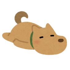 犬のユーザーアイコン