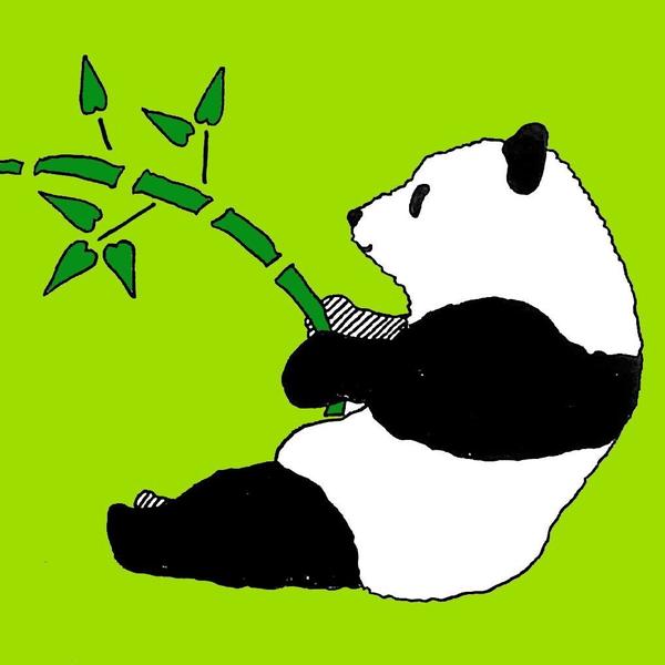 .pandah's user icon
