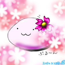 Seiru( ˙꒳˙  )のユーザーアイコン