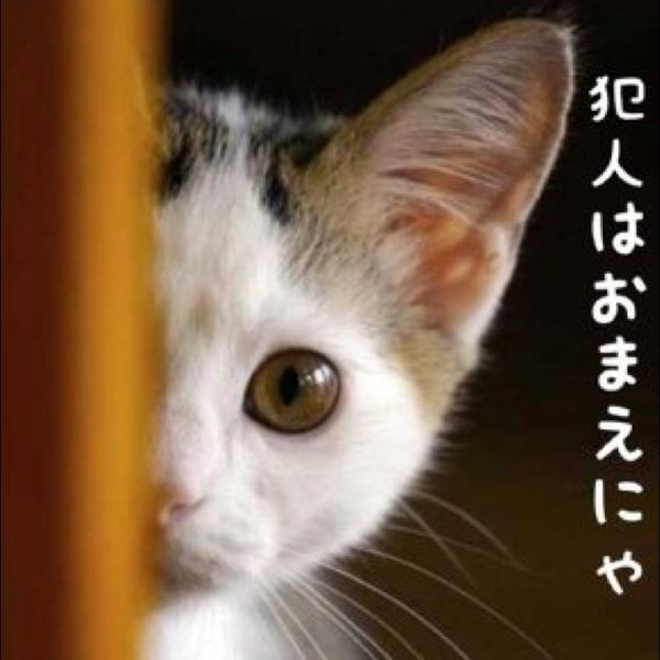Atsushi.Oのユーザーアイコン