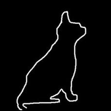 夜想猫のユーザーアイコン