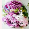 Nagomi EM
