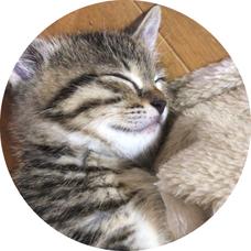 Laicaのユーザーアイコン