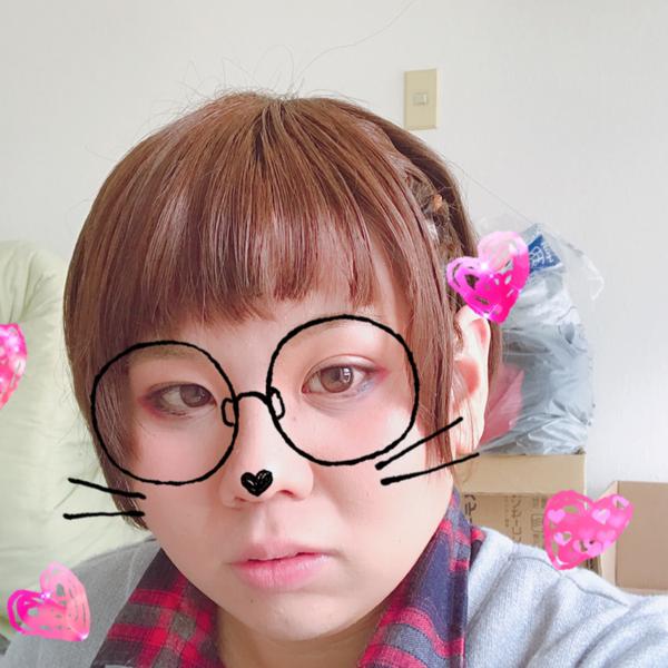 蜜猫♂のユーザーアイコン