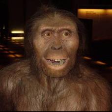 楽器を持った猿人のユーザーアイコン