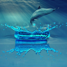 Aqua drop︎ ❄︎のユーザーアイコン