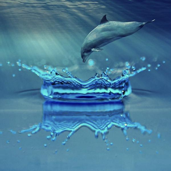 Aqua drop︎ 🌸 配信用オリジナル音源製作中✩︎少しずつ聴きnana中🎧のユーザーアイコン