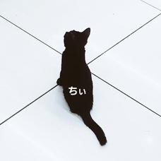 ちぃ2のユーザーアイコン