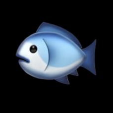 生身ちゃんになりました🐟's user icon