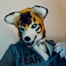 虎犬(とらいぬ)のユーザーアイコン