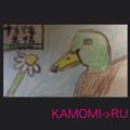 KAMOMI->RUのユーザーアイコン