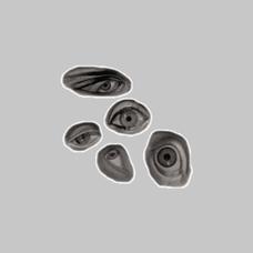 魚の骨 のユーザーアイコン