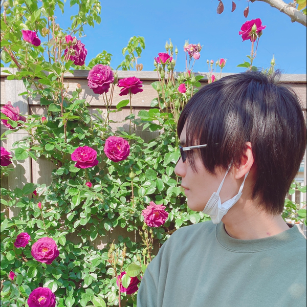 カイリ📦⇒かごめ歌た's user icon