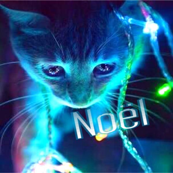 Noëlのユーザーアイコン