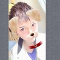 ポメくん@ビートボックス初心者のユーザーアイコン