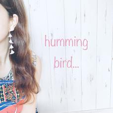 hummingbird...のユーザーアイコン