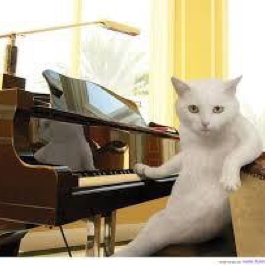 pianocafe Kumiのユーザーアイコン