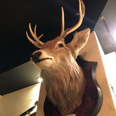 鹿。のユーザーアイコン