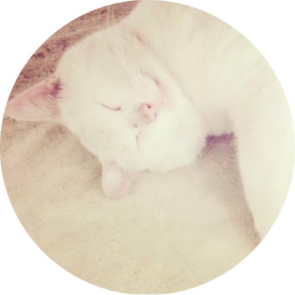 ろーる's user icon