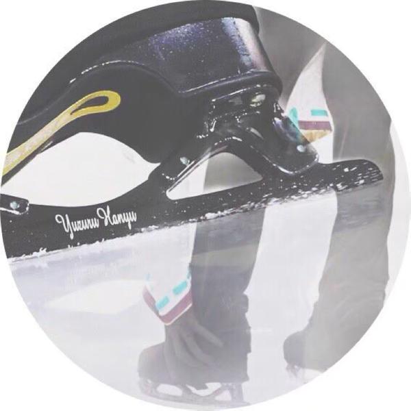 Flora🌷*゚'s user icon