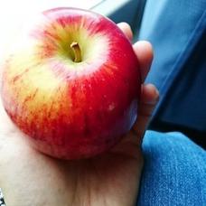 林檎ジュースのユーザーアイコン