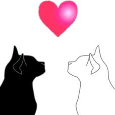 猫日和っのユーザーアイコン