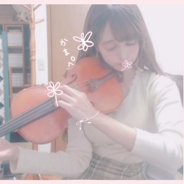 ゲームBGMアレンジ演奏屋かまぺ໒꒱🎻🎹🌸Twitterお休み中🙏😫1人で勝手にアレンジ重奏する普通の人←のユーザーアイコン